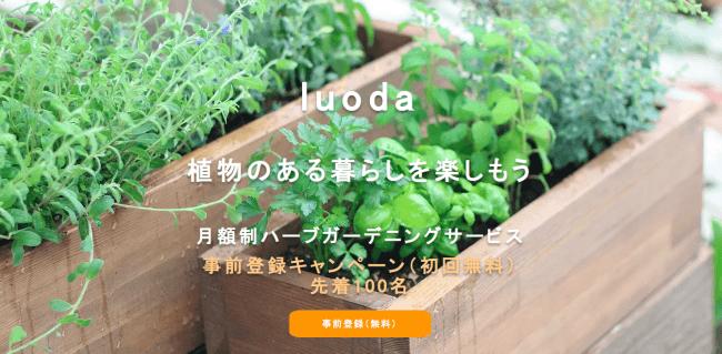 月額制のガーデニングサービス「luoda」